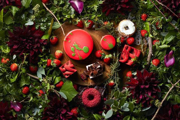 今季のテーマは「小さな苺の森」。ハイアット リージェンシー 大阪のストロベリースイーツブッフェ