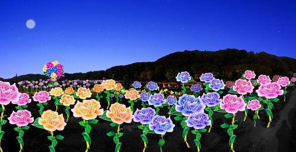 高さ1.5mのバラ300本が浮かぶ「バラの海」