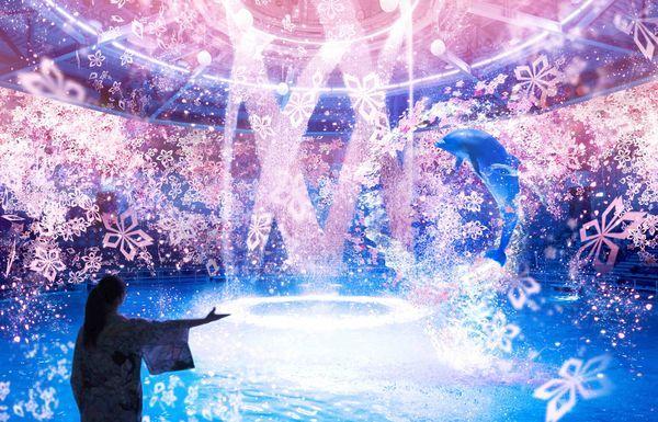 —ドルフィンパフォーマンス—【夜】ナイトパフォーマンス「桜語り(さくらがたり)」